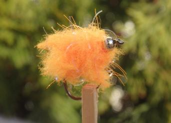 Egg fly orange fluo